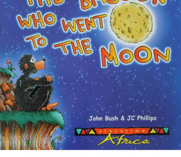 The Baboon That Went To The Moon - Childrens Book