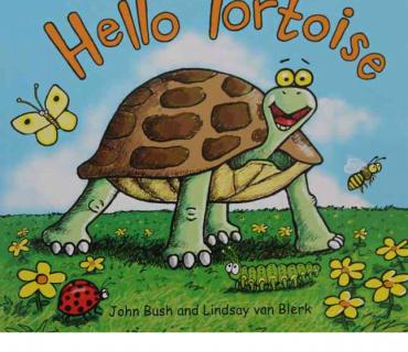 Hello Tortoise - Childrens Books