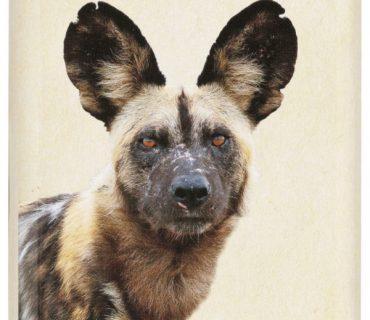 https://africanmeraki.co.za/product/animals-of-africa-tins/