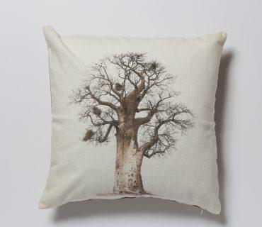 Cushion Cover - Baobab Legacy5